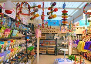 Bird accessories Supplier South Australia